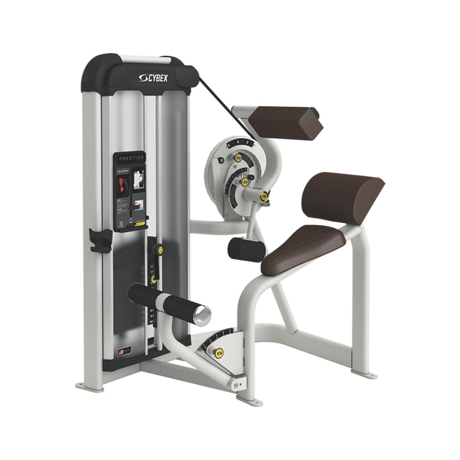 Cybex Prestige Back Extension - Total RLD