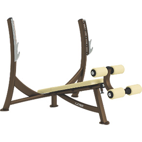 Cybex Free Weights Olympic Decline Bench