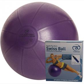 500Kg Swiss Ball & Pump - 55cm Purple 24.99 GBP