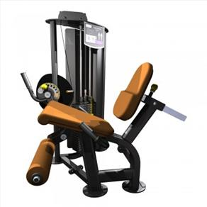 A-Unit Seated Leg Extension  *CLICK HERE*