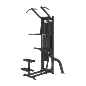 Cybex Jungle Gym Free Standing Dip-Chin  *CLICK HERE*