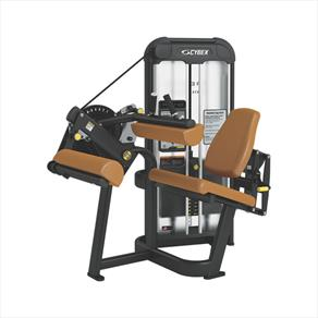 Cybex Total Access Seated Leg Curl Start RLD - Heavy Stack *CLICK HERE*