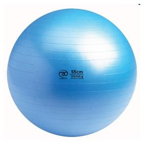 300Kg Swiss Ball only - 55cm Blue *Click here*