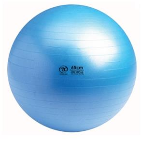 500Kg Swiss Ball only - 65cm Blue *Click here*