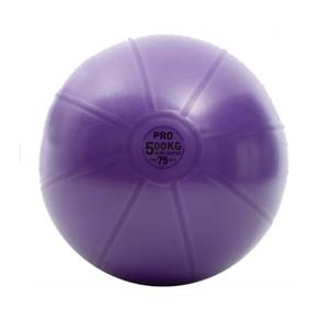 500Kg Swiss Ball only - 75cm Purple *Click here*